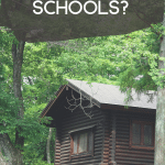 What are log home building schools