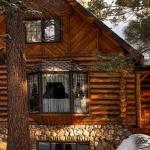 Building a Log Cabin