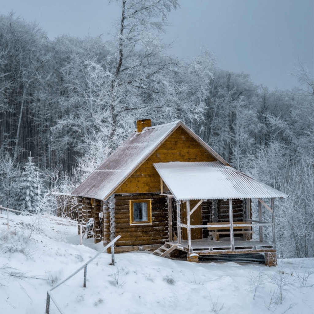 Log home in wintry forest
