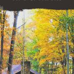Fall Cabin Maintenance