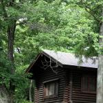 Log Cabin Home Design