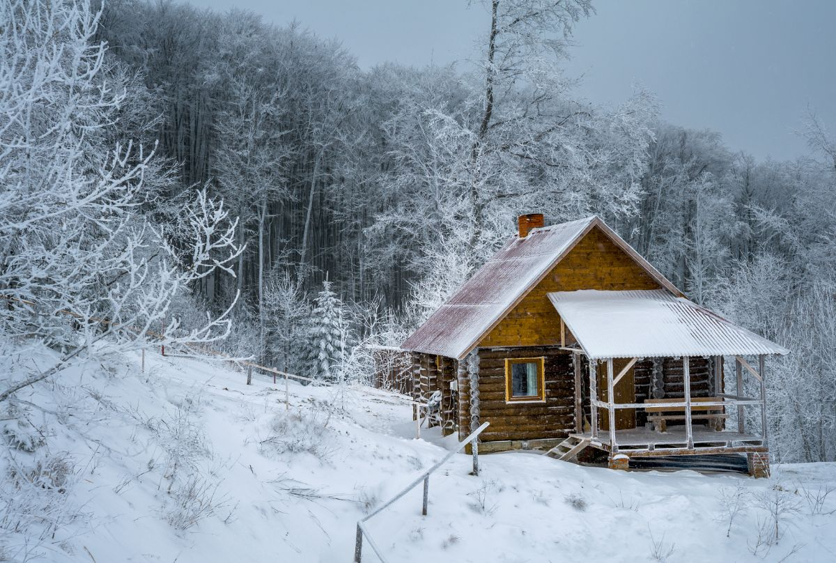 Log Cabins in forest covered with snow