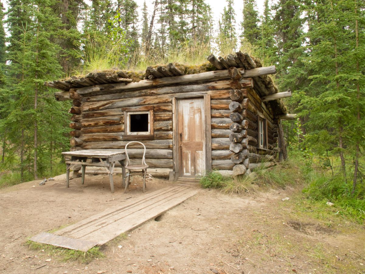 Old Log Cabin in woods