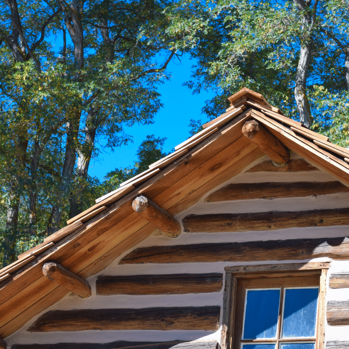 Roof of a Log Home