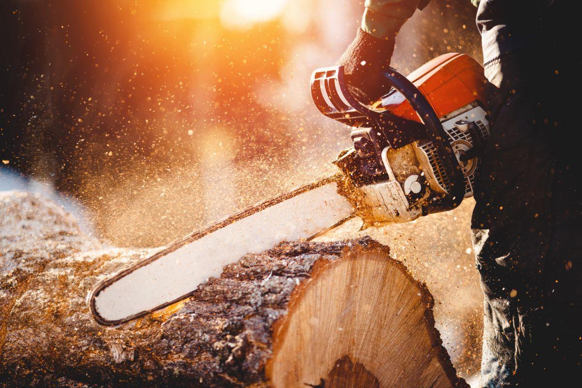 closeup of a chain saw