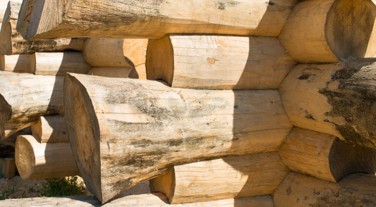Log Cabin handcrafted notches